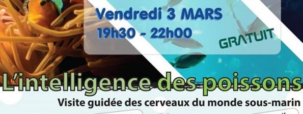 affiche orleans conf 3 mars