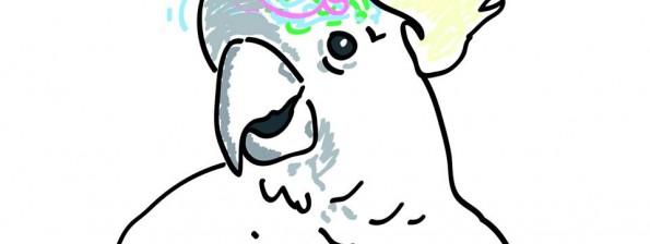 logo cervelle d'oiseau
